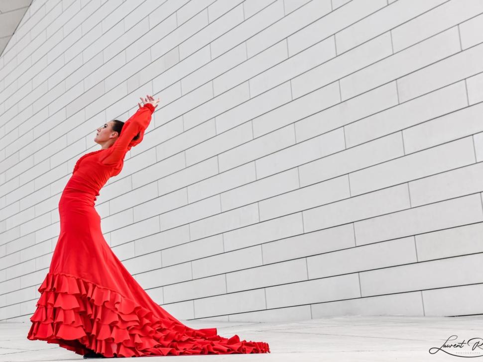flamenco photographe Bordeaux